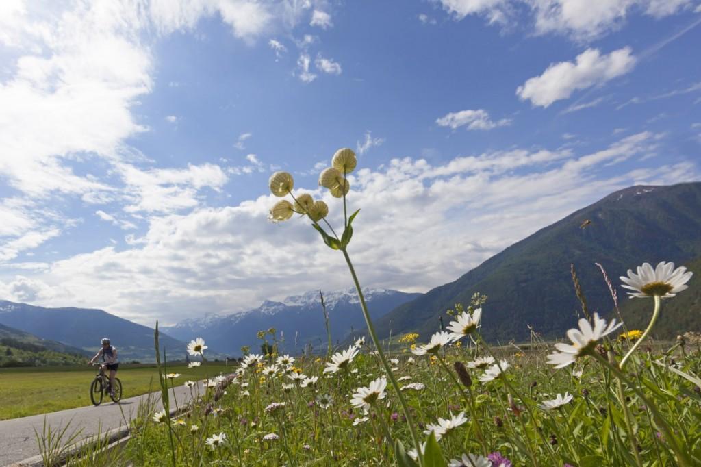 Die Vinschgau-Etappe zählt zu den landschaftlich vielseitigsten Radstrecken der Via Claudia Augusta. © Vinschgau Marketing/Frieder Blickle
