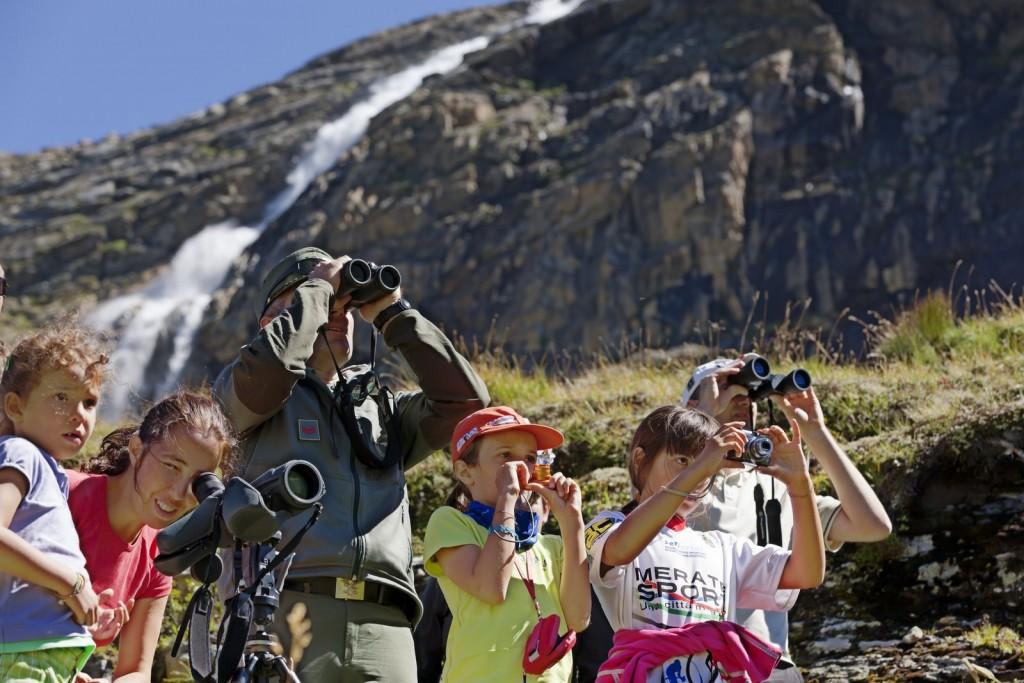 Mit etwas Glück bekommen Urlauber bei ihren Streifzügen durch die Bergregionen des Vinschgau Alpenbewohner wie Murmeltiere oder den seltenen Bartgeier zu Gesicht © Vinschgau Marketing/Frieder Blickle